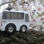 蹴上インクラインの桜